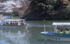 ホームページ制作事例: 高岡古城公園 お濠めぐり遊覧船